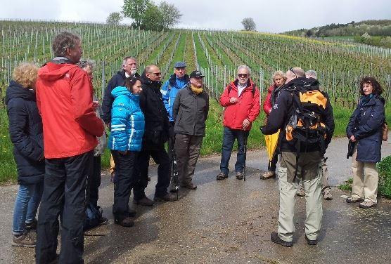4d6278b9 SCR Weinwanderung 2016 - Segelclub Rheingau